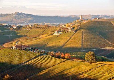 Wine & Food Tasting Experience – Italy